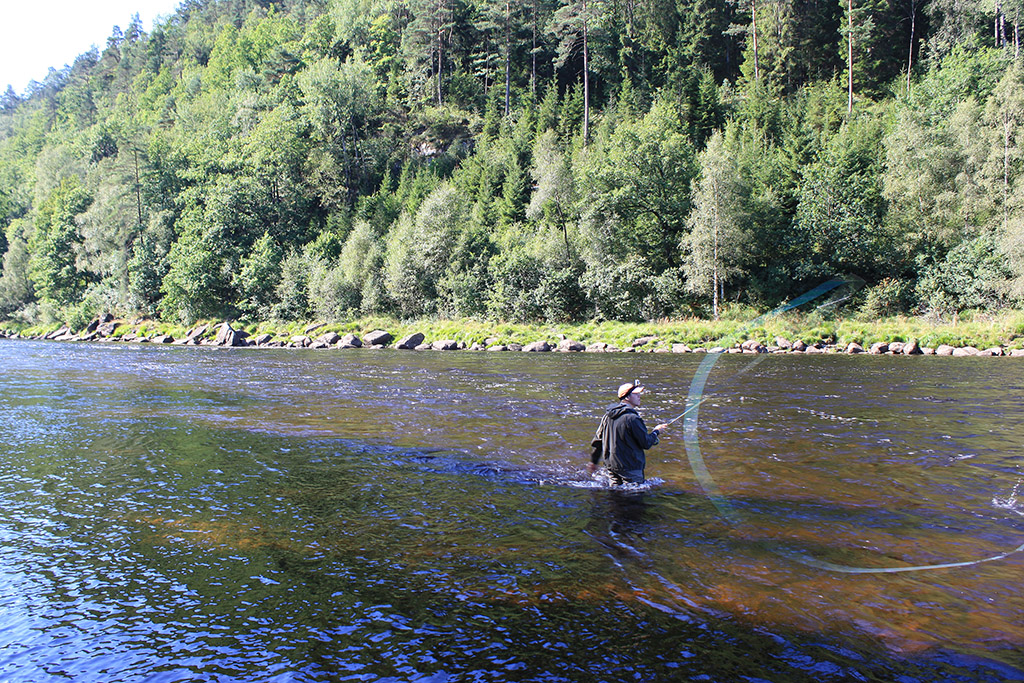Rodtrip salmon fishing on mandal river for Fly fishing competitions