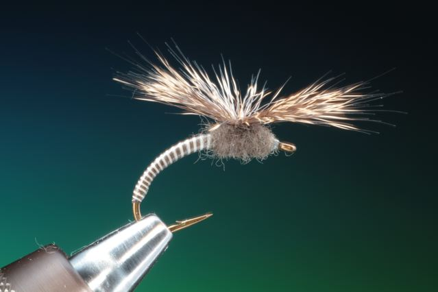 16. The finished Fender emerger, made only from deer hair and Bug Bond.