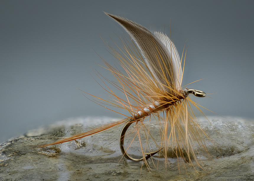 12. The finished fly ready to go fishing.