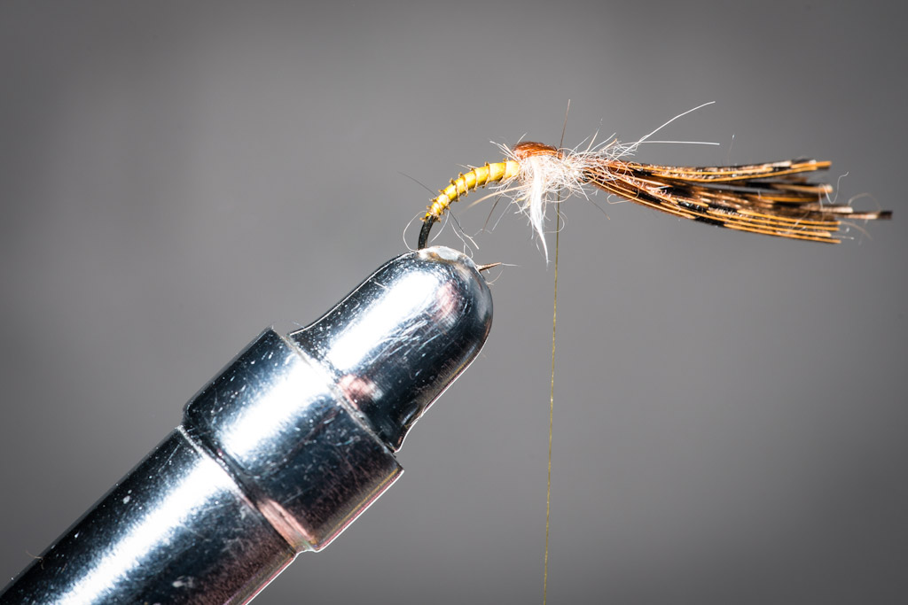 9. Cover the thorax with 5-6 pheasant tail strands