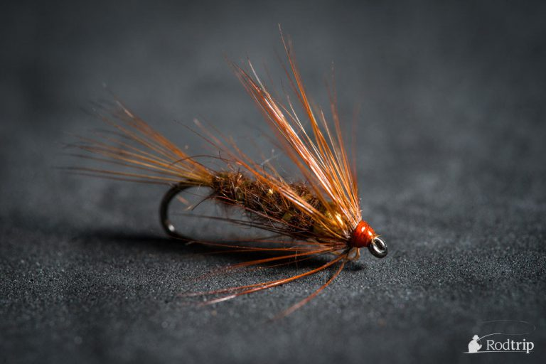 March Brown Nymph tied by Mathias Briquemont.