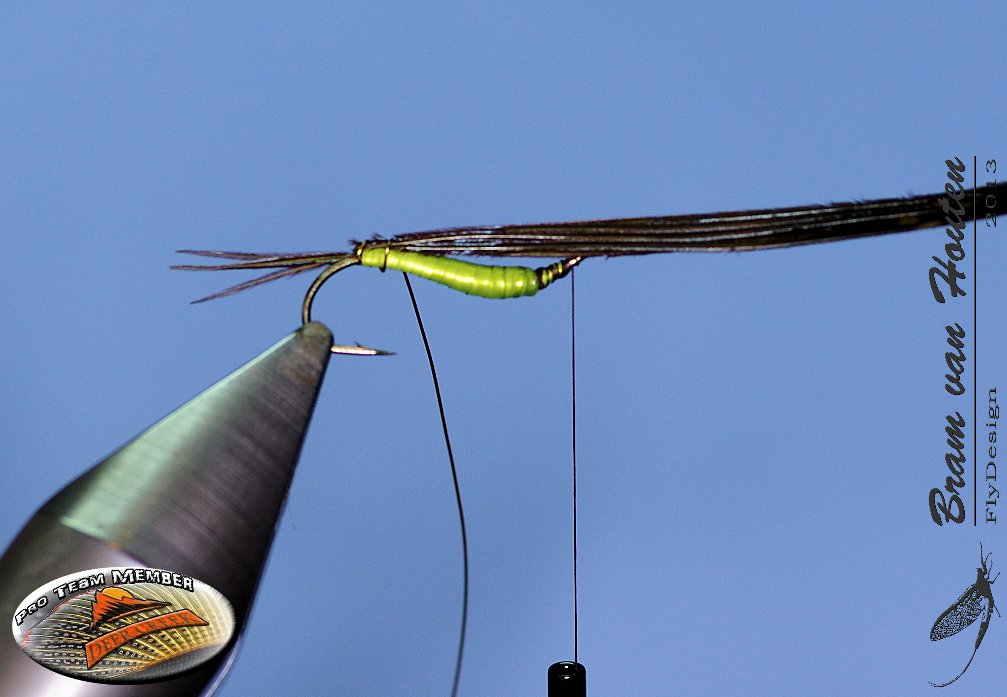 7. Cover the back of the body with the pheasant tail fibers, fix it with the copper wire