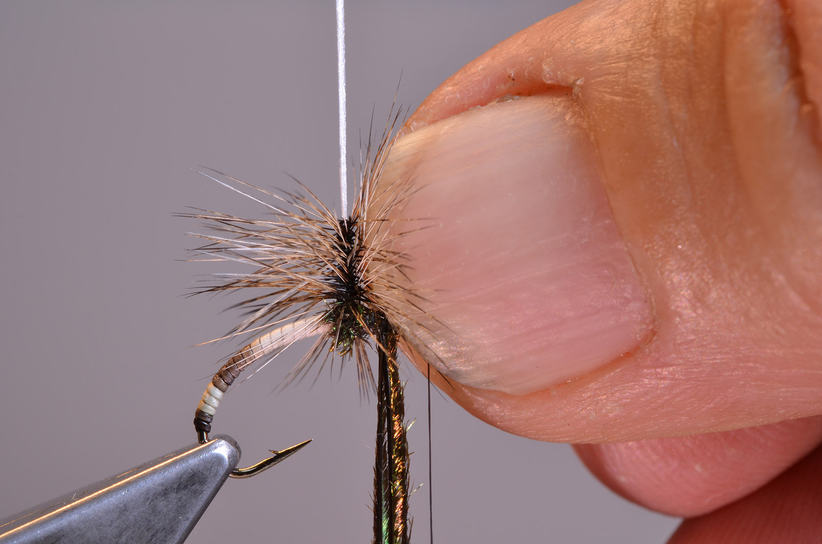 10. With the nail of your left hand (assuming right-handed tiers), push into the hackle to divide the barbs left and right.